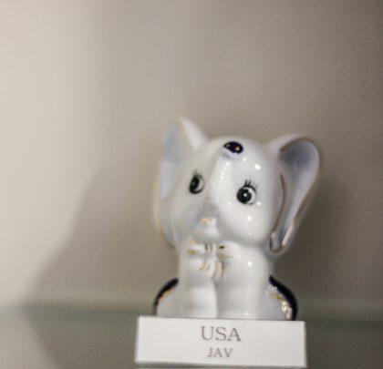 THE ELEPHANT (USA)
